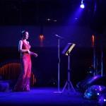 Ebru Gündeş Sahne Fotoğrafları (13)